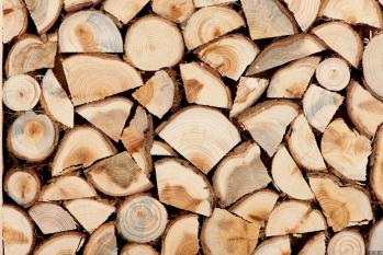 Пол-палец-потолок. Что происходит с ценами в госзакупках дров и торфобрикетов
